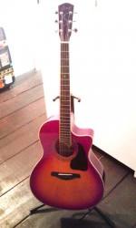 急遽ギターを買っちゃいました。